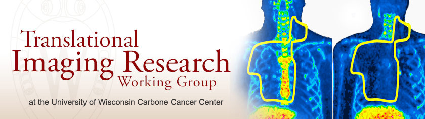 Translational Imaging Research Working Group