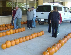 Pumpkins at American Family Children's Hospital