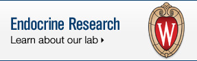 UW Health Endocrine Surgery: Learn about our research lab