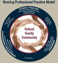 UW Health nursing professional practice model