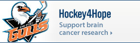 Hockey4Hope: Support brain cancer research