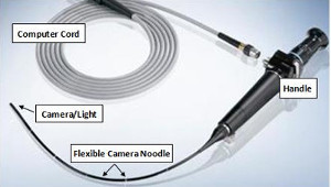 Equipment used during an nasendoscopy