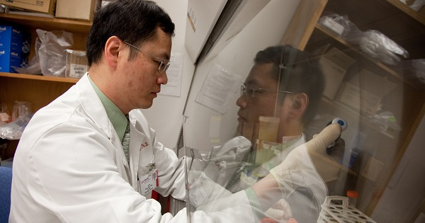 Dr. John Kuo, UW Carbone Cancer Center brain cancer researcher, studies cancer stem cells to identify new cancer therapies