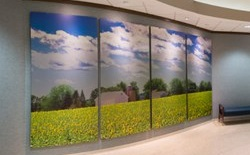 """Pope Farm"" by Michael Knapstein. Located in the University Hospital entrance."