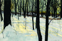 Shadows of Winter Wood, by Dick Fayram