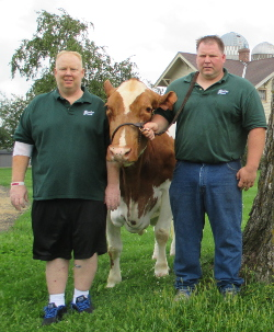 Scot, left, with hospital bracelet, and Kurt Peterson show off the Wisconsin Cow of the Year, Coulee Crest Nick Lorilyn. Photo courtesy of Coulee Crest Farm