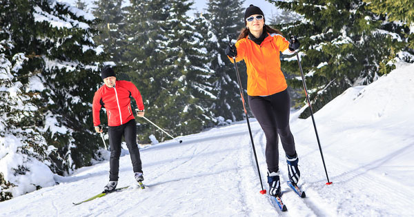 Two cross-country skiers in the woods