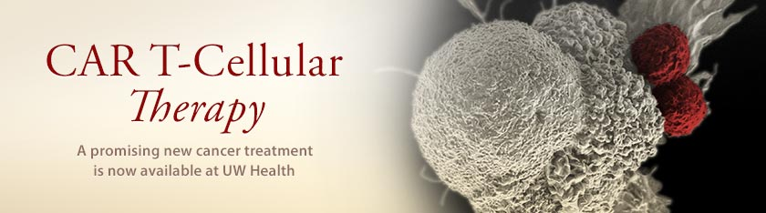CAR T-Cellular Therapy