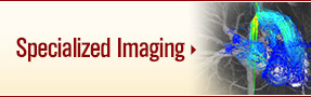 Adult Congenital Heart Disease Program: Specialized Imaging