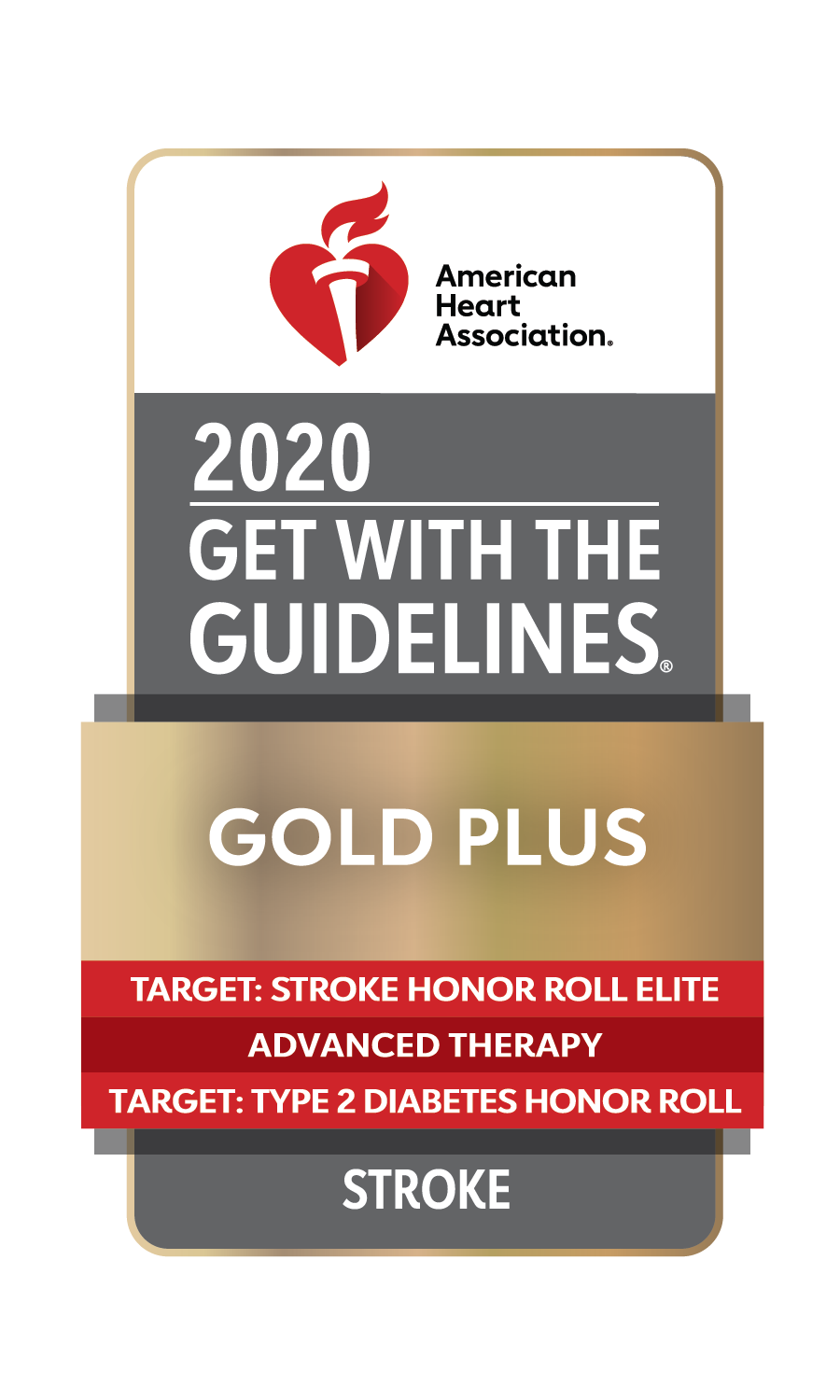 2020 Get With the Guidelines Target: Stroke Honor Roll Elite Plus Gold Plus logo