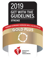 2019 Get With the Guidelines Target: Stroke Honor Roll Elite Plus Gold Plus logo